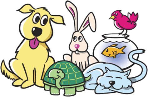 Essay my pet animals